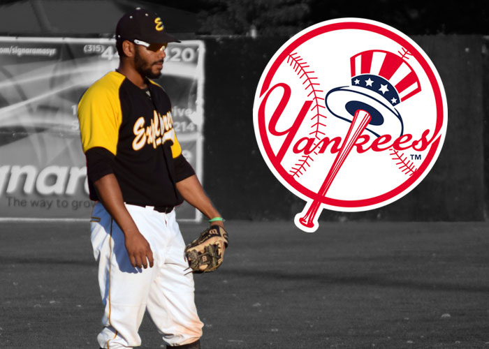 FORMER SULLIVAN EXPLORERS SS SIGNS WITH THE NEW YORK YANKEES