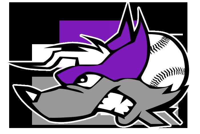 nh-wild-logo-mascot